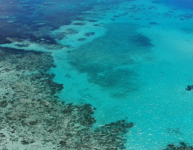 Alla scoperta del mondo sottomarino dell'Australia